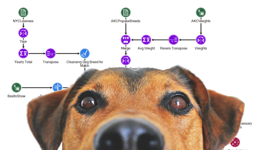Dogs and Data